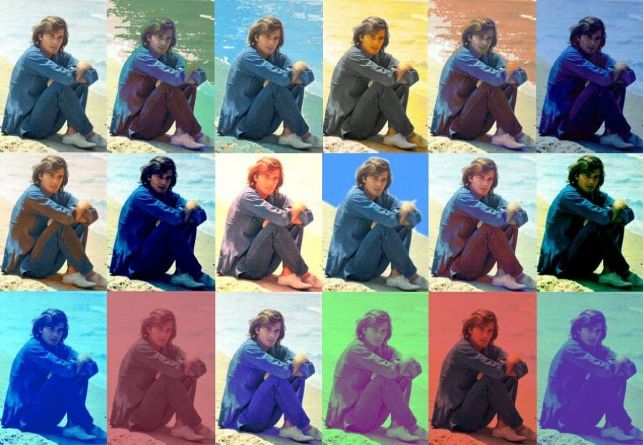 Max Delys collage